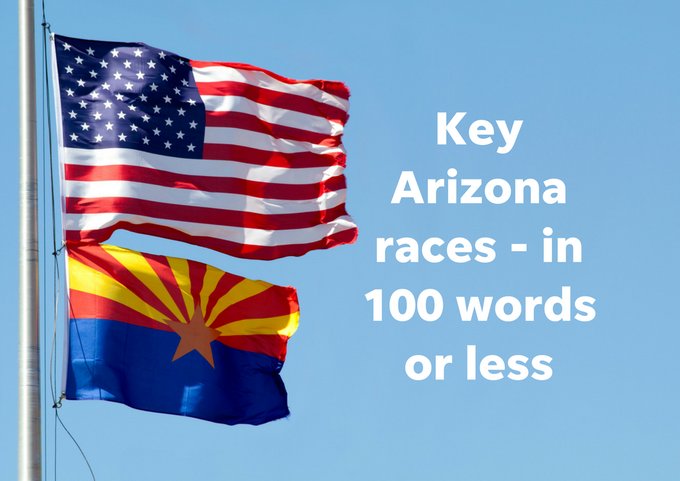 Need to get up to speed quickly on some of Arizona's key races and players? We've got you covered - in 100 words or less.