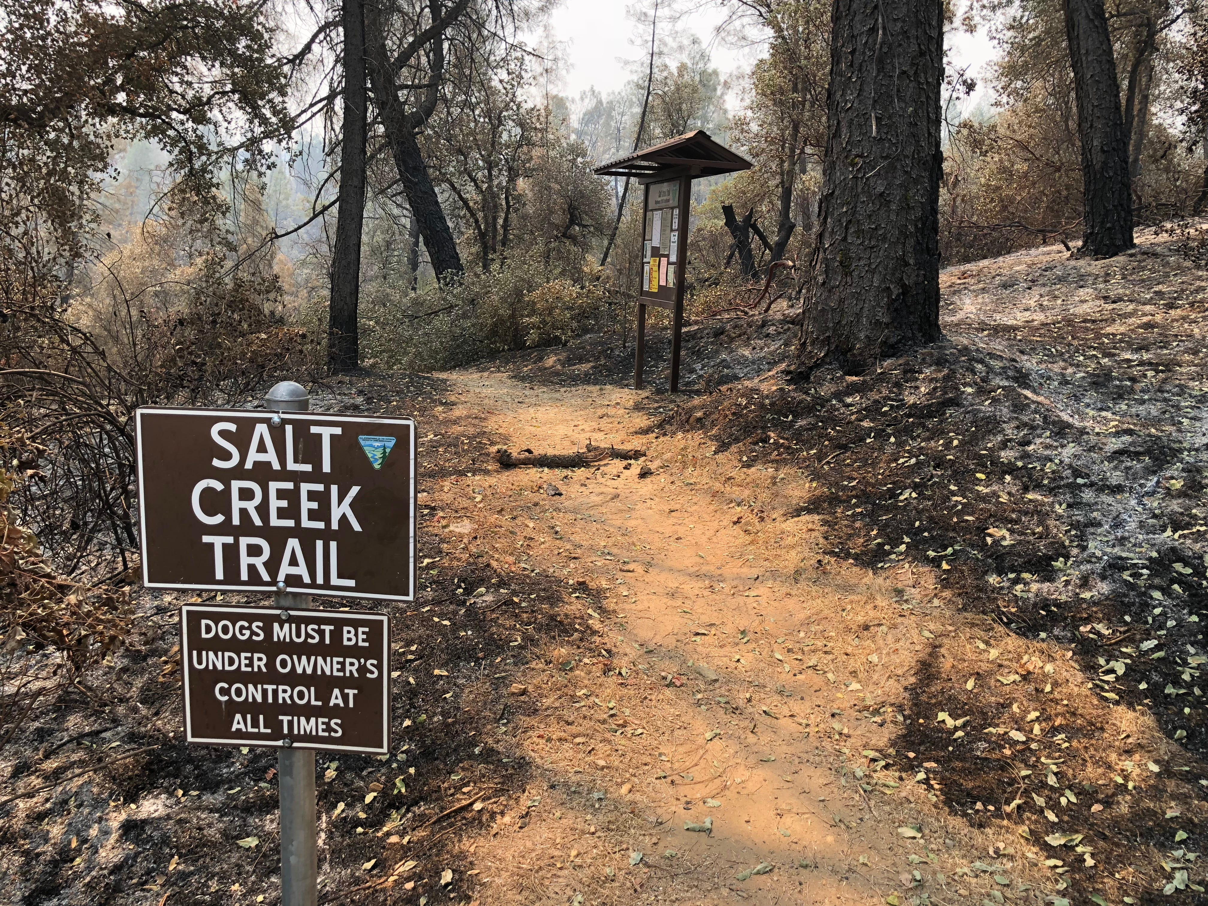 The area near the Salt Creek Trail is closed to the public as officials repair power lines and clear brush in the vicinity. This parking area off Highway 299 for Salt Creek Trail has significant burn damage and smoky air.