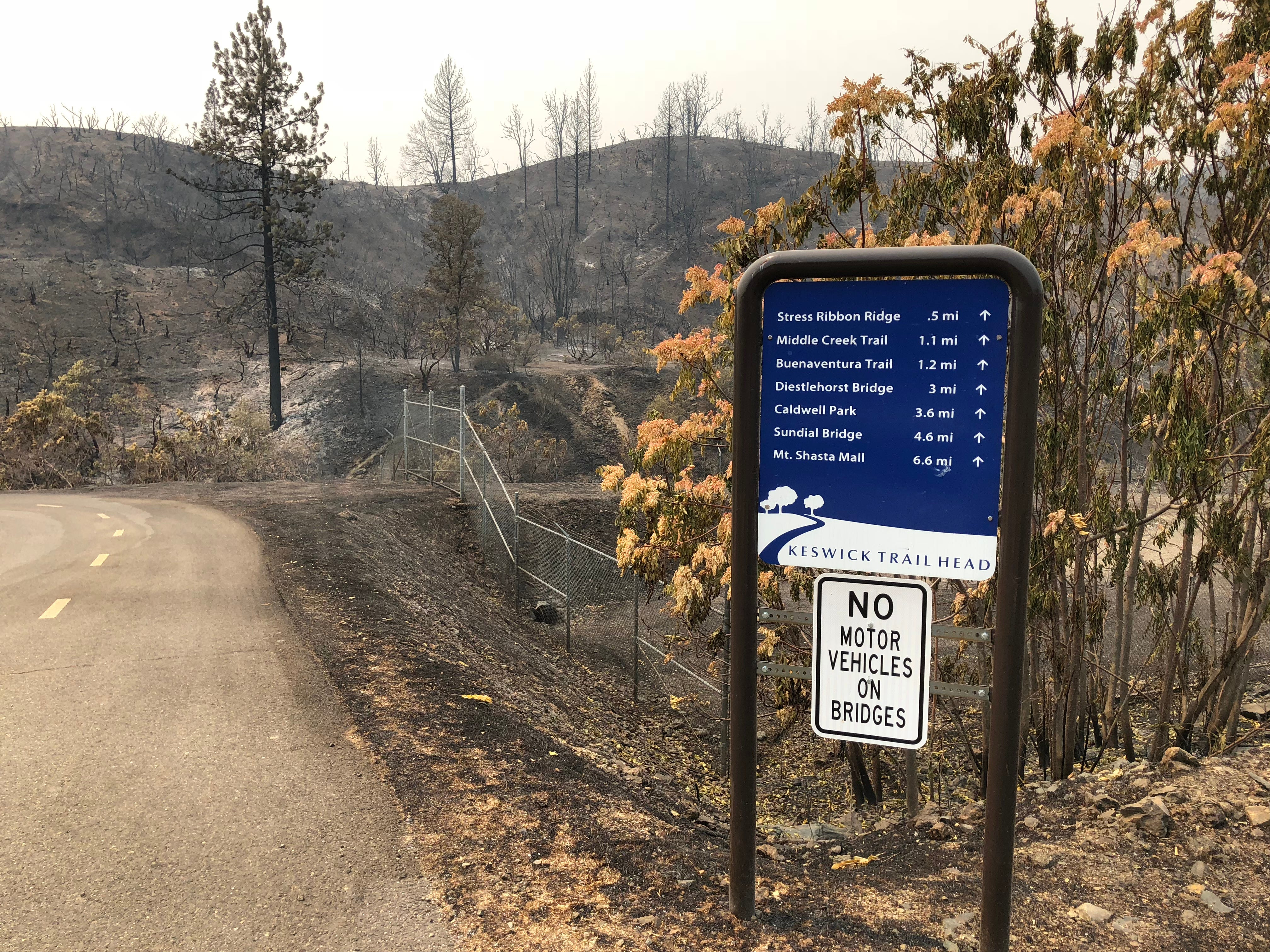 A south-facing view by the Keswick Dam Parking area by Heart Rate Hill, west of the dam itself, shows significant portions of land scared by the Carr Fire. The area is inaccessible to the public as of Friday, Aug. 3.