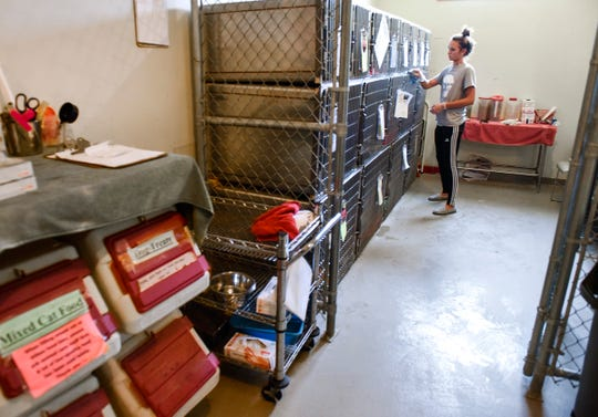 Tori Baumgarten cleans cat kennels that have been added to a storage room Friday, Aug. 3, at the Tri-County Humane Society in St. Cloud.