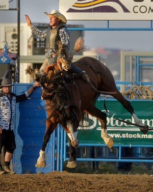 LeRoy Eash of Fortine, shown in the saddle bronc competition at the Big Sky Rodeo Roundup during the Montana State Fair earlier this month, took second in the event during the Cascade PRCA Pro Rodeo over the weekend. Including ground pay, he earned almost $1,400 for his efforts.