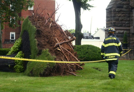 Morristown teen, Kyle Gehsmann escaped through his damaged driver side door shaken but uninjured after a violent afternoon storm uprooted a large tree in front of St Peters Episcopal Church onto the roof of his car.  August 3, 2018. Morristown, NJ