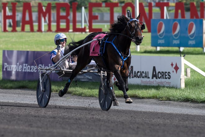 Hambletonian Day at the Meadowlands on Saturday, August 4, 2018. Atlanta wins the Hambeltonian Final.