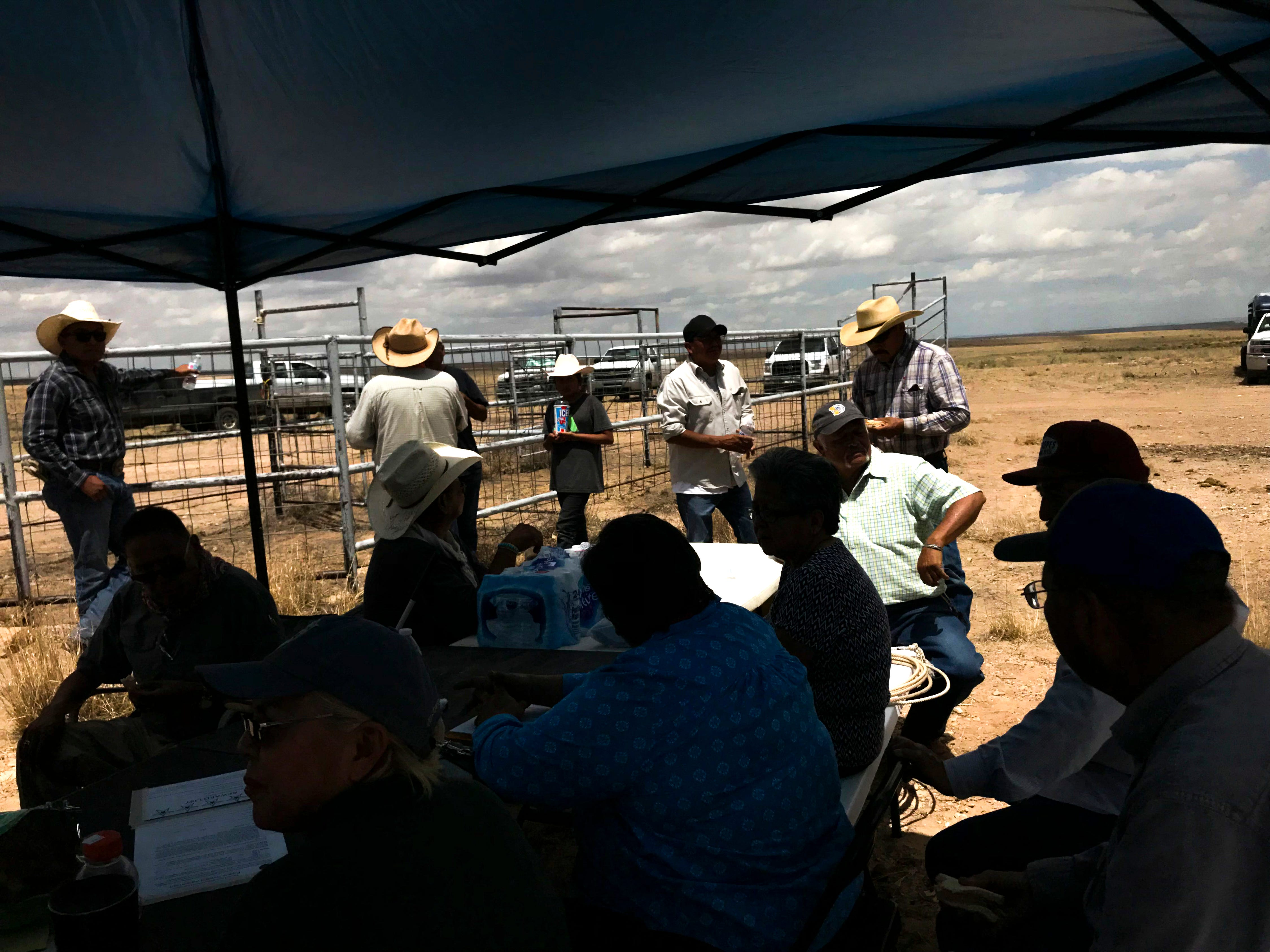 Members from the Navajo Nation Department of Agriculture, Bureau of Indian Affairs and community members wait for horses to arrive, Friday, August 3, 2018 at the auction yard in Naschitti.