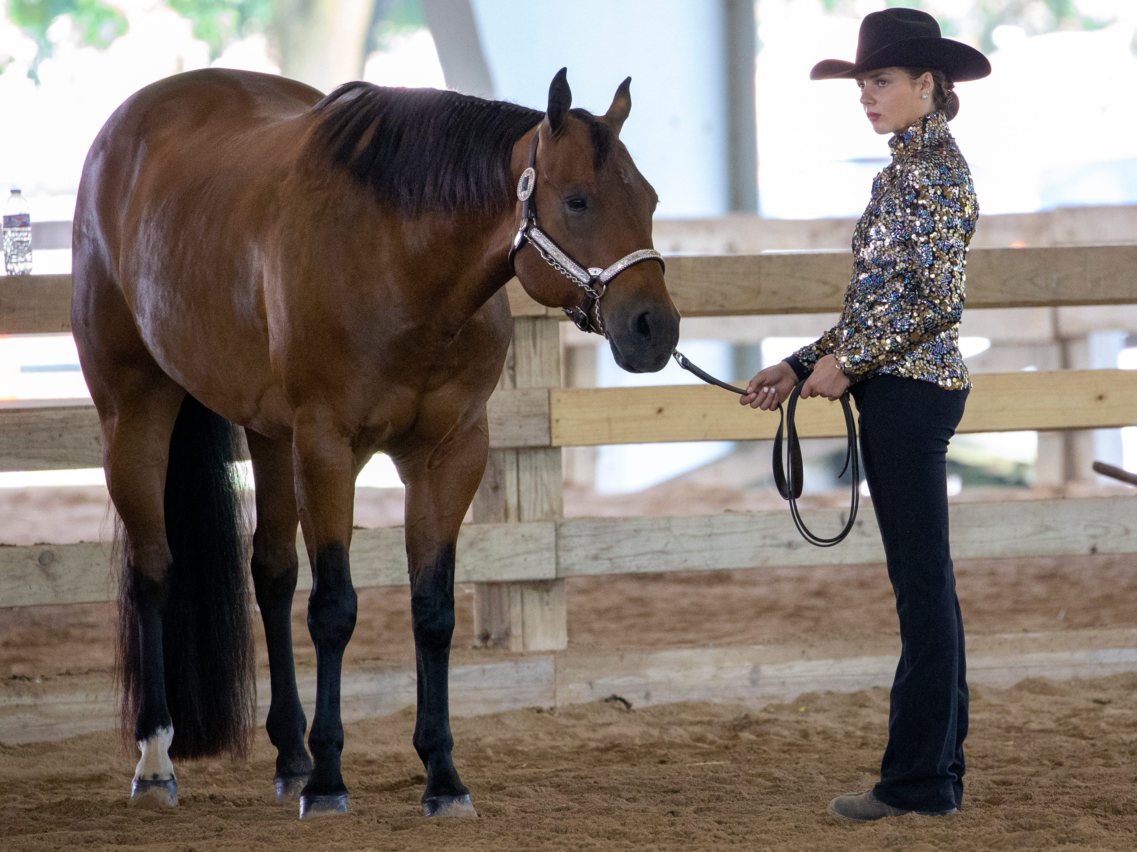 Chasity Marchant shows her horse in the showmanship championship class during the Winnebago County Fair on Friday, Aug. 3, 2018.