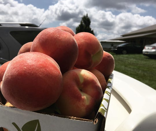 A basket of peaches rests on the car during the Peach Festival at Flichbaugh's Orchard and Farm Market.