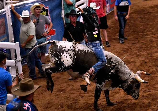 Esperanza Leffew of Phoenix begins her championship steer ride July 31 in the Moms' Steer Riding at the Taylor County Coliseum. The event and coinciding auction kicked off the 11th annual Youth Bull Riders World Finals.