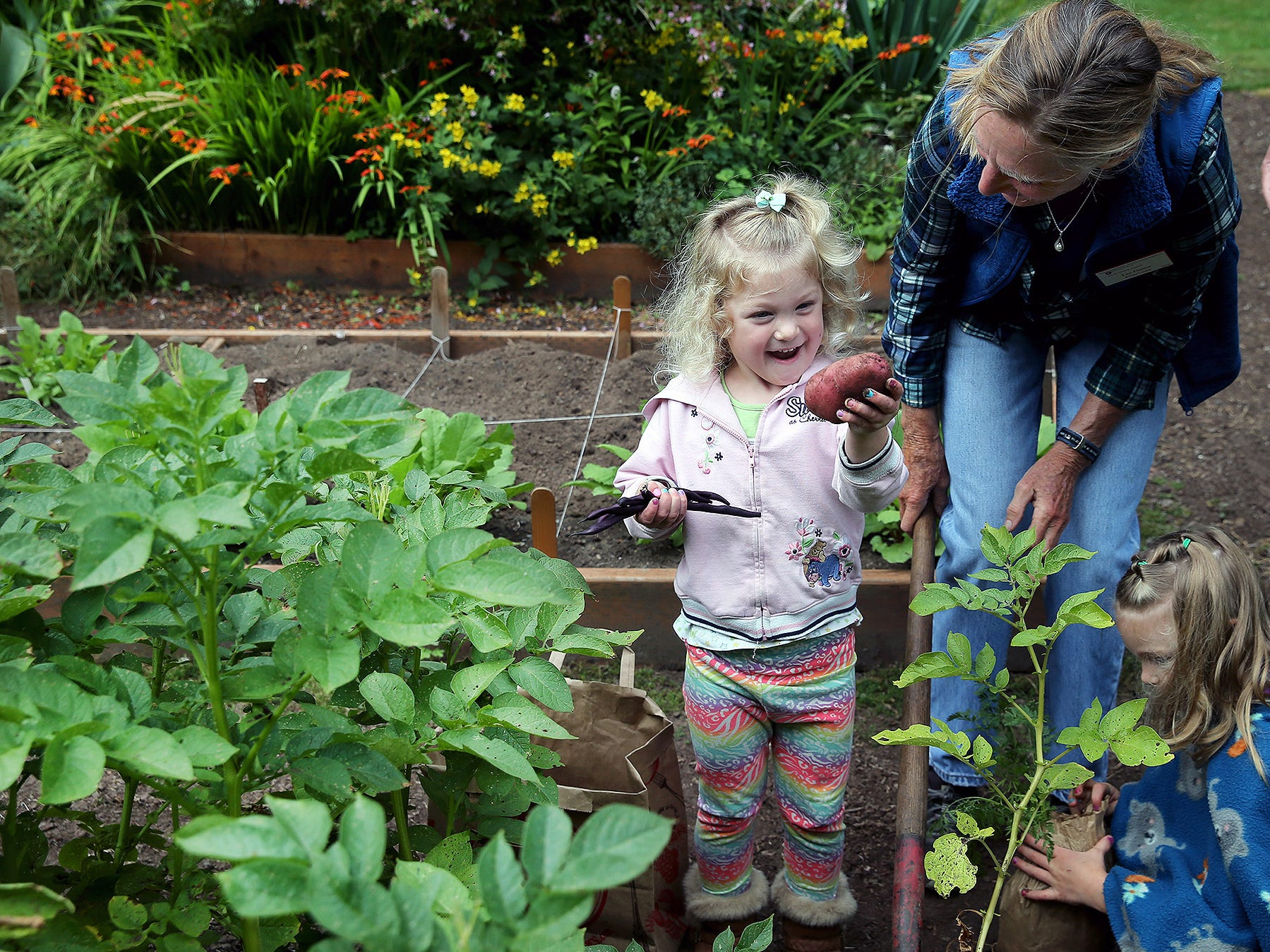 Emily Moss, 3, is amazed that she found a potato in the garden at the Anna Smith Garden on Saturday, August 4, 2018. Master Gardeners from the WSU Extension were there to answer questions and help children. On the right is WSU Master Gardener Lee Derror.