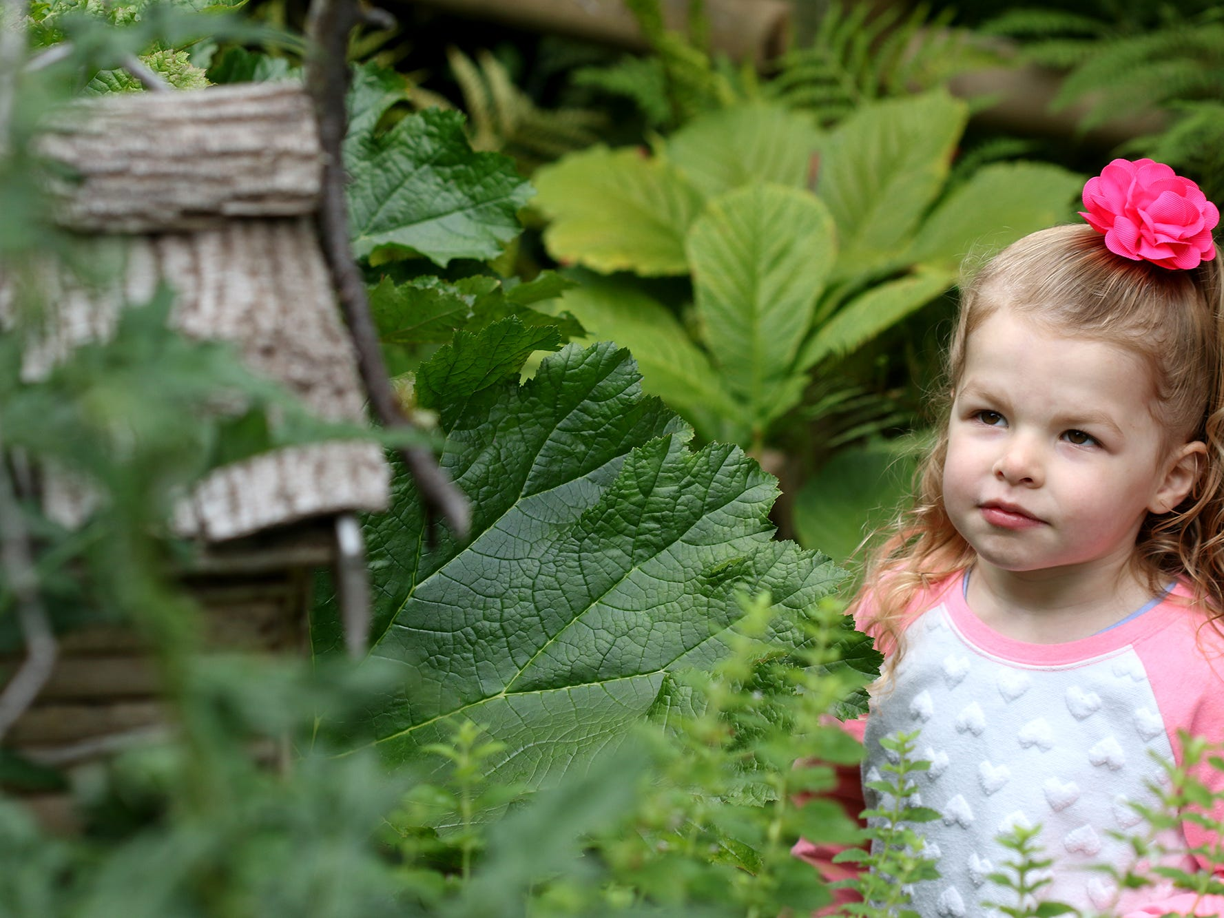 Tessa Clough, 3, looks over a fairy hut at Anna Smith Garden.