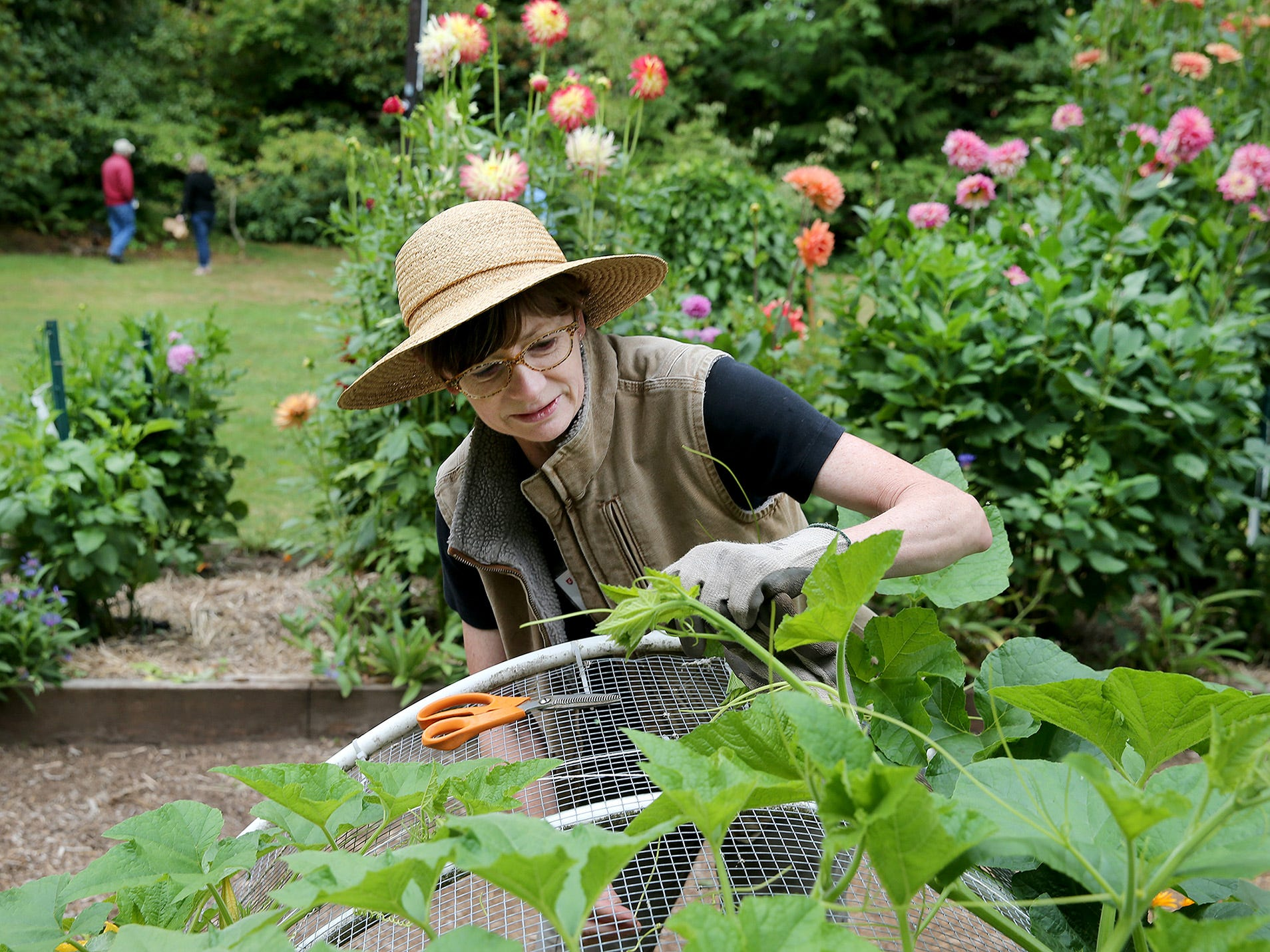 Linda Treflinger, of the WSU Master Gardener Program, works at Anna Smith Garden on Saturday, August 4, 2018. Master Gardeners from the WSU Extension were there to answer questions and help children.