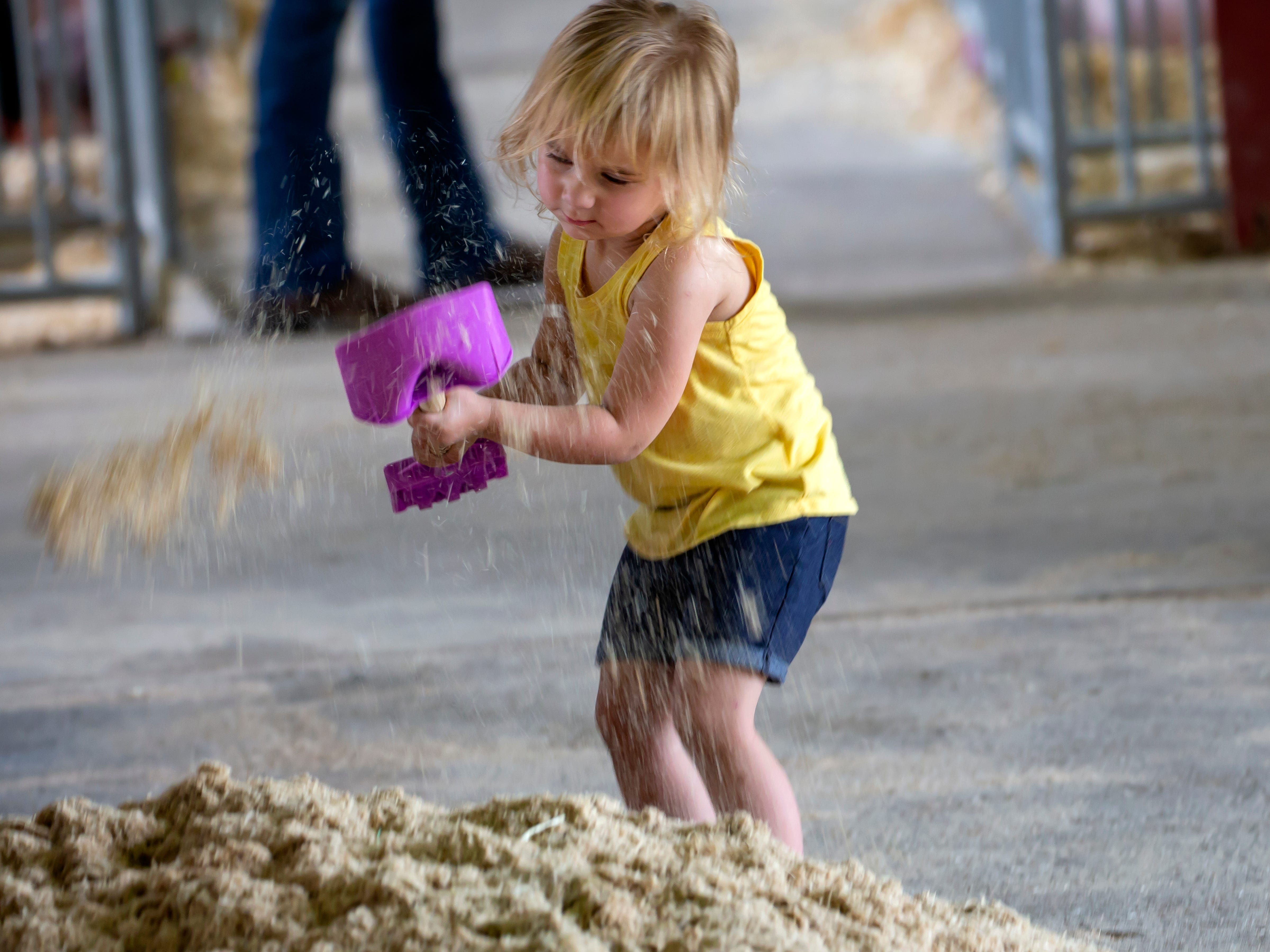 Suttyn Gibson is busy moving sawdust in the barn during the Winnebago County Fair on Saturday, Aug. 4, 2018.