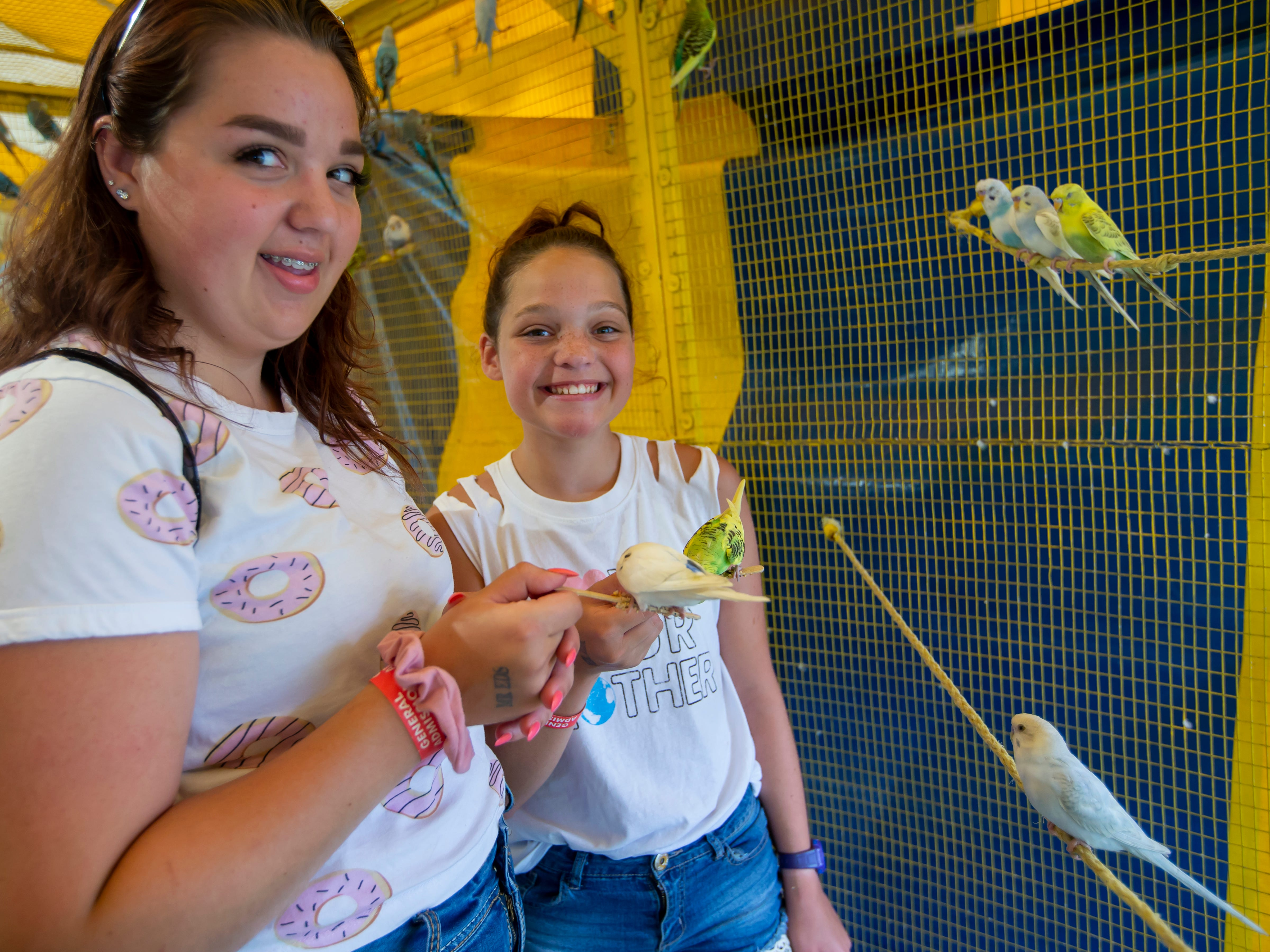 Emma and Sophie Graff visit with the parakeets in the petting zoo at the Winnebago County Fair on Saturday, Aug. 4, 2018.