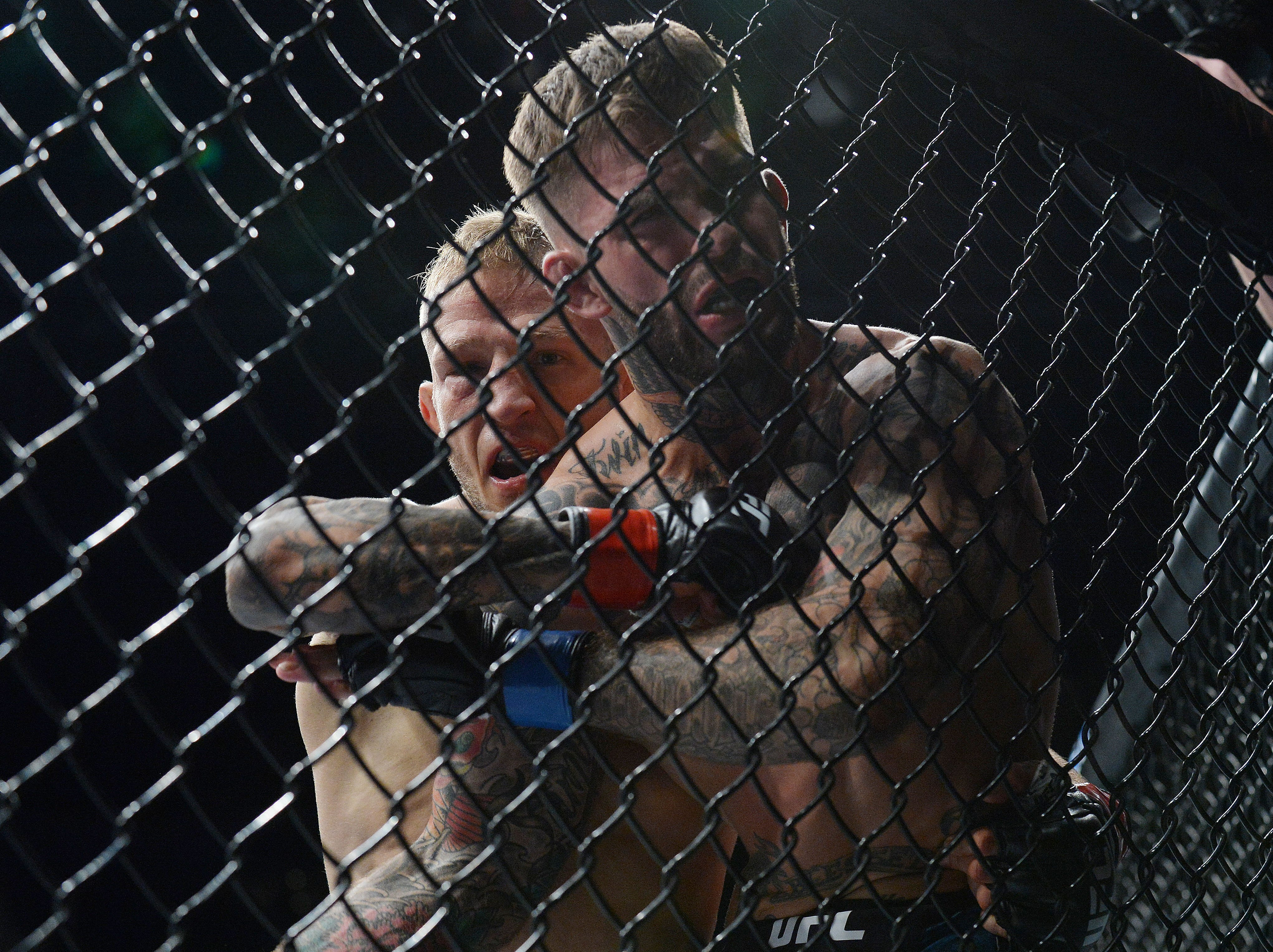 T.J. Dillashaw lands punches as Cody Garbrandt is pinned to the cage during UFC 227 at Staples Center.