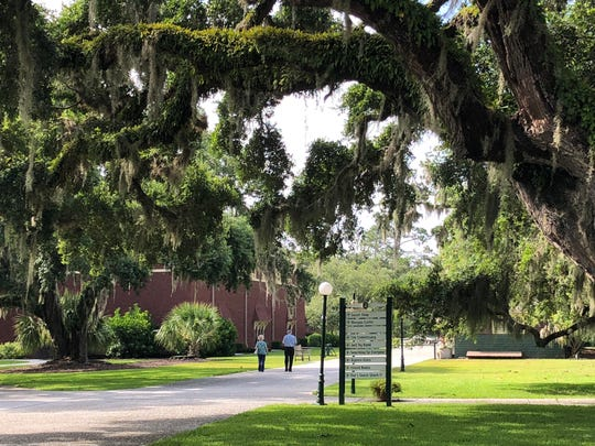 Spanish moss hangs from the oaks along the historic district walking path.