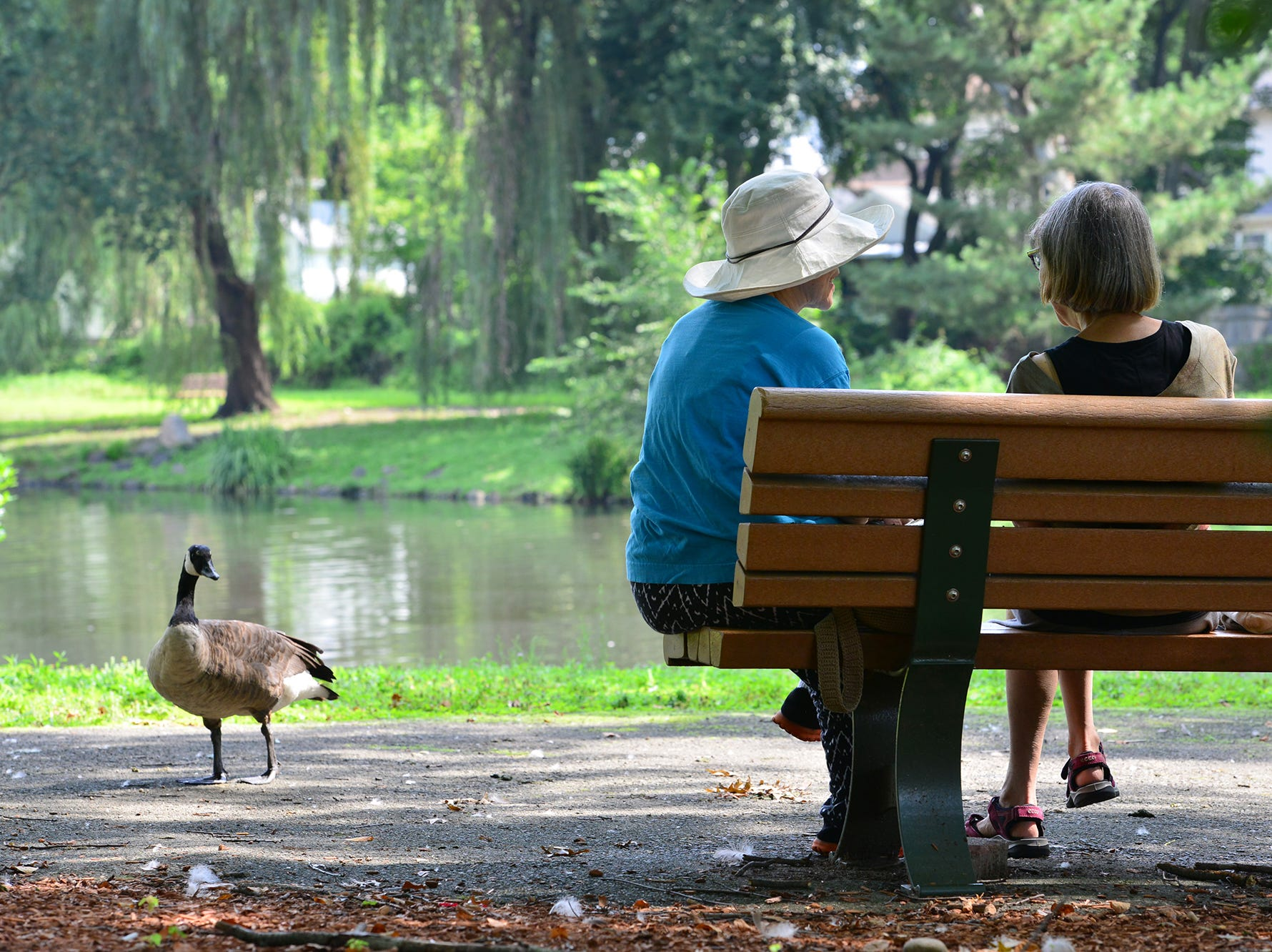From left, Miriam Holmes, of Teaneck, and Harriet Finck, of Ridgewood, chat in the shade at Cooper's Pond Park in Bergenfield on Monday morning August 6, 2018.