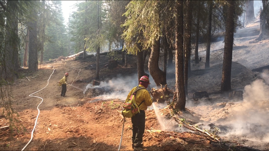 A crew mopping up on the Natchez Fire.