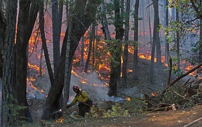 A firefighter works to hold a containment line on the Taylor Creek Fire, August 4.