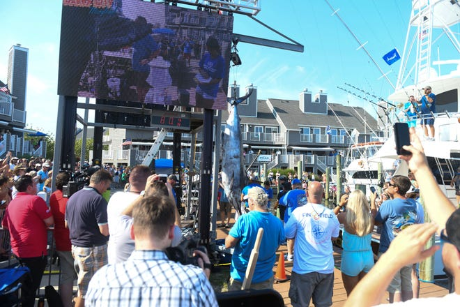 The crowd goes cheers as the 6th largest blue marlin in tournament history was weighted in at 881lb. Caught aboard the Auspicious on Monday, August 6, 2018 during the 45th Annual White Marlin Open in Ocean City, Md.
