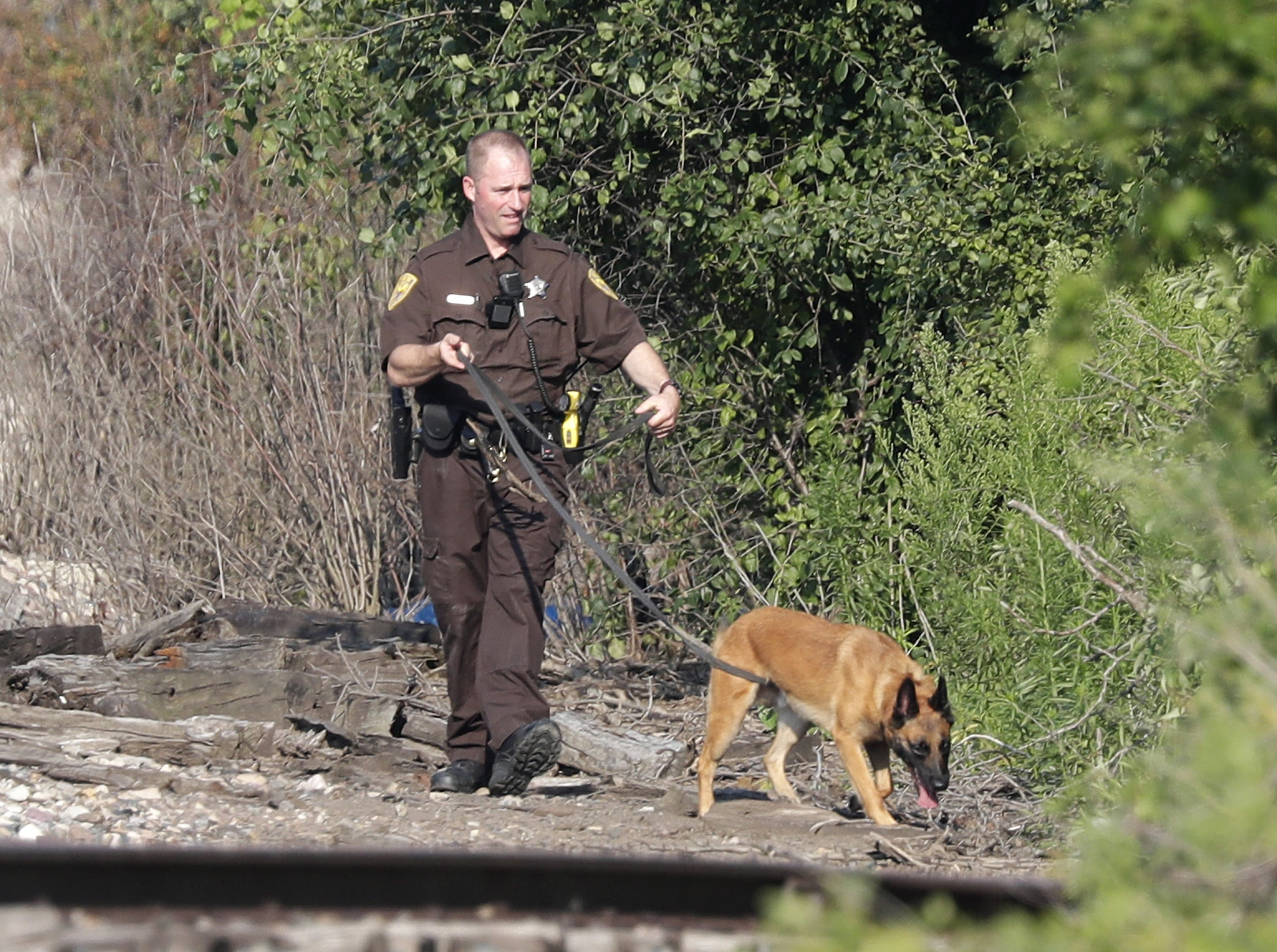 Appleton police officers and the Outagamie County Sheriff's Department K9 unit search, following a traffic stop, for an individual on and around the railroad tracks between Kensington Dr. and Marcella St. Monday, August 6, 2018, in Appleton, Wis.  Wm. Glasheen/USA TODAY  NETWORKWisconsin