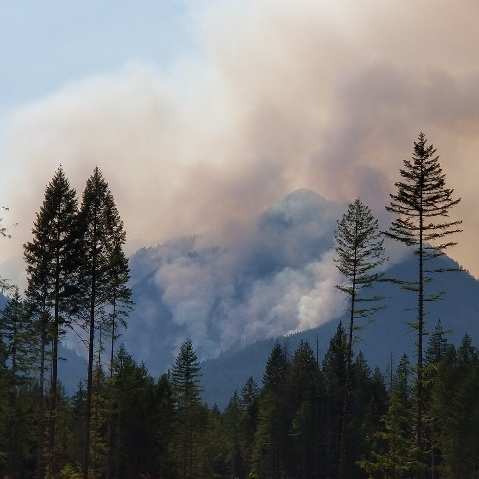 Mr. Outdoors: What we can do to prevent disasters like the Maple Fire