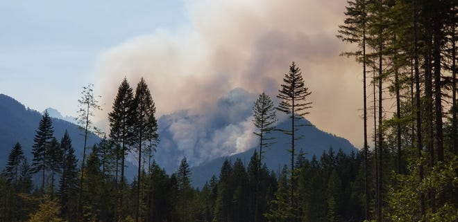 The Maple Fire has scorched nearly 1,000 acres of the Olympic National Forest.