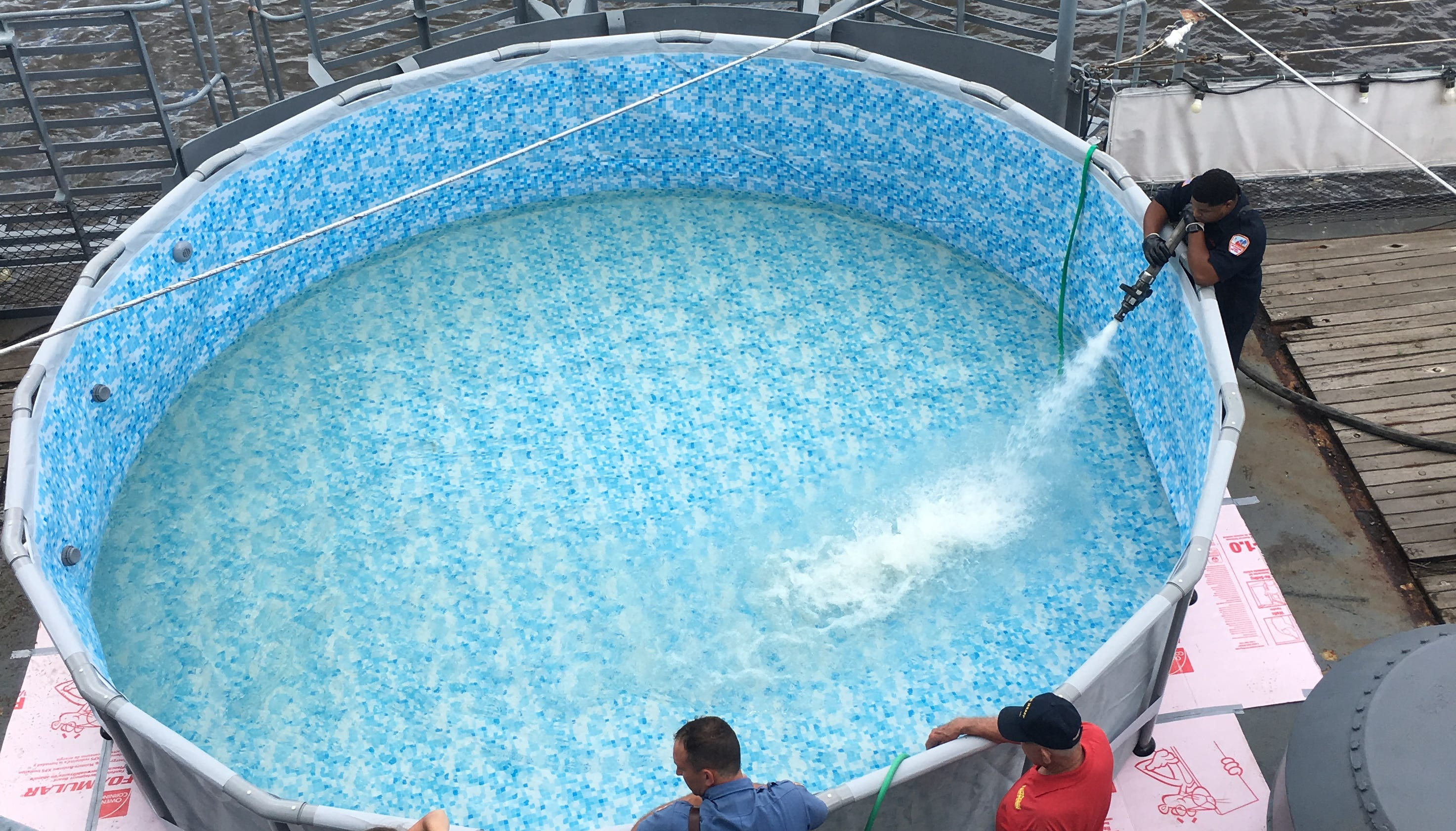 Take a dip in the battleship New Jersey pool on a museum tour.
