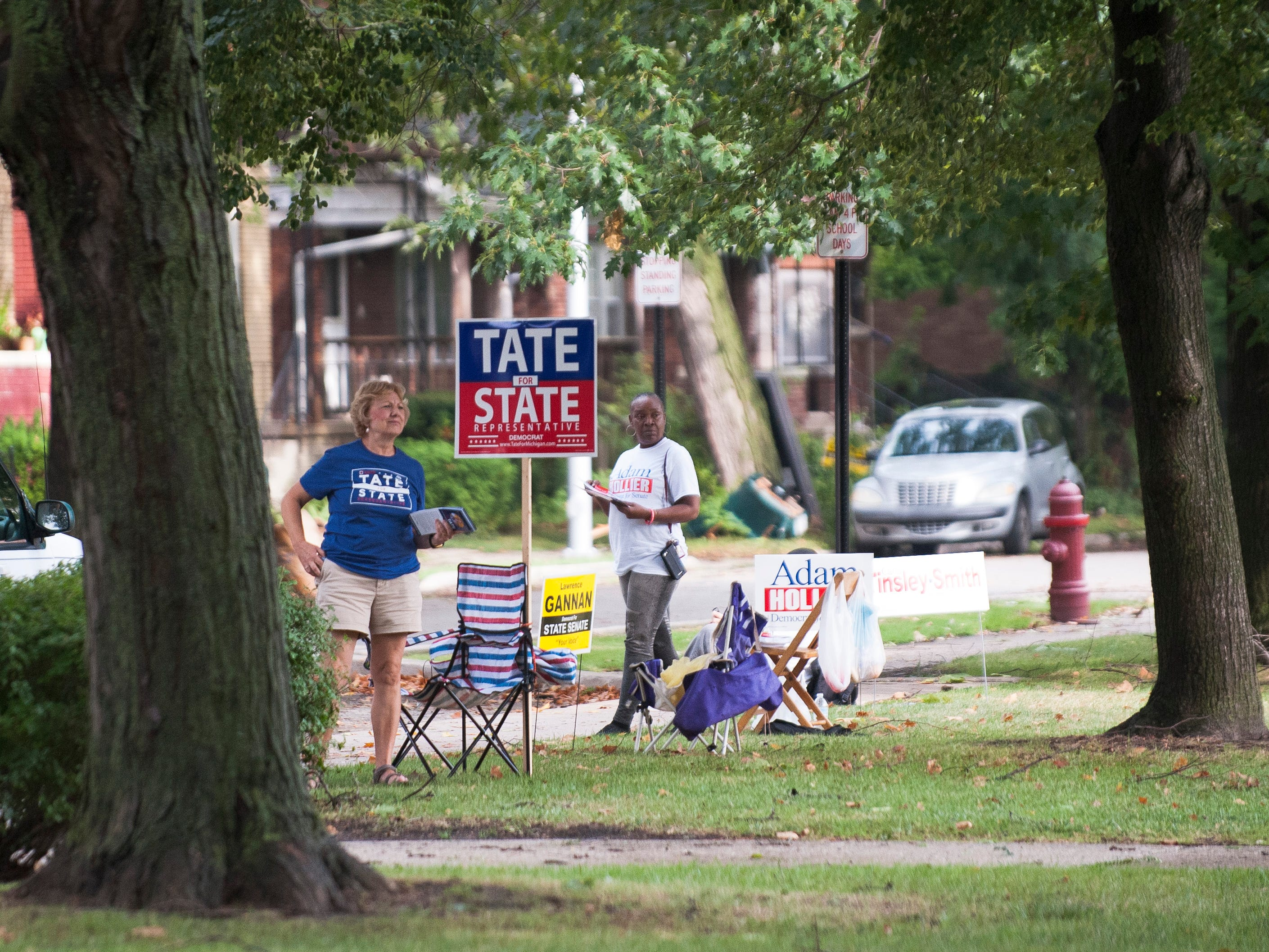 Campaign volunteers representing Democratic candidates Joe Tate, for state representative,  and Adam Hollier, for state senate,  stand at the ready to discuss their candidates' merits outside the polling station at Trombly School in Grosse Pointe Park.