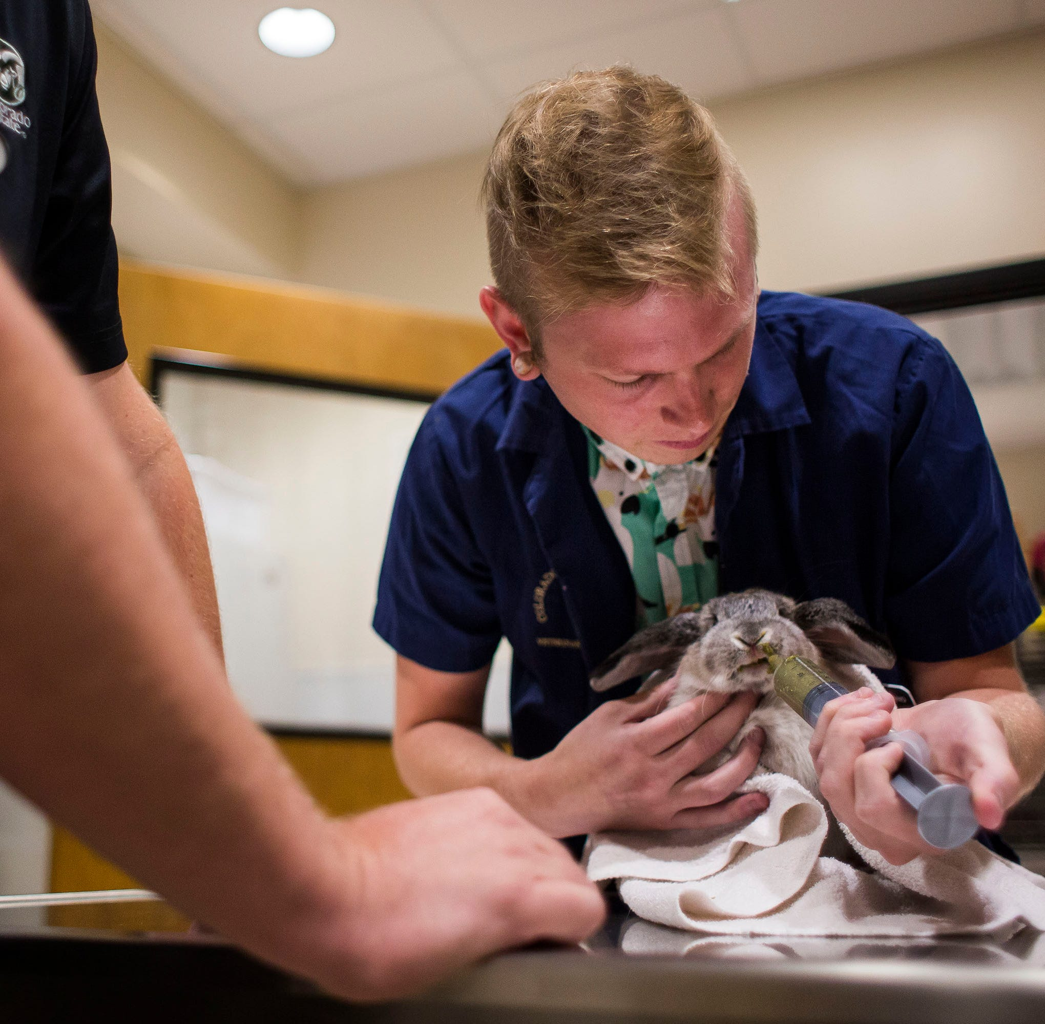 Check out Colorado State University's vet hospital at annual open house