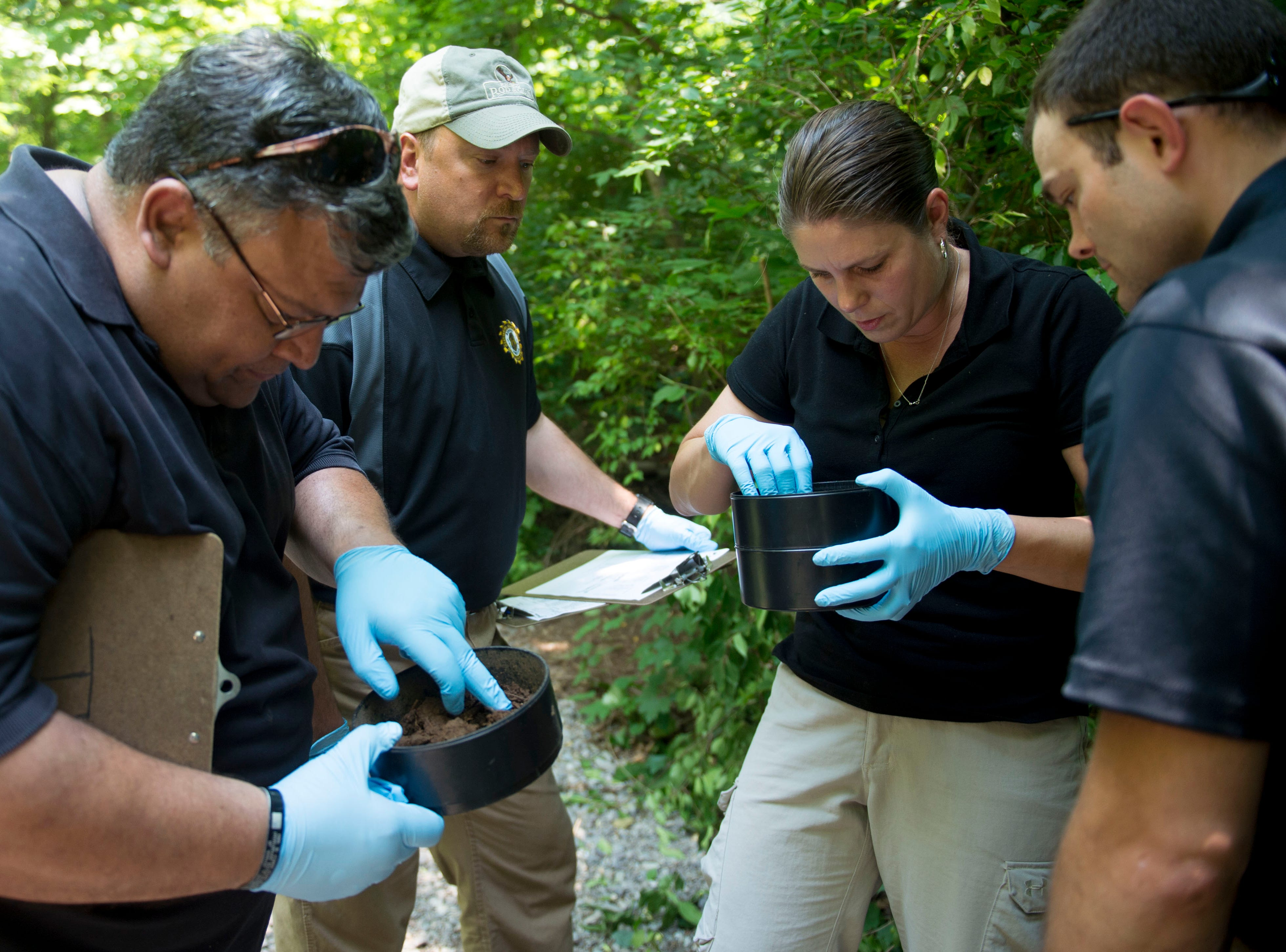 From left,  Luis Colon of Virginia's Portsmouth Police Department , Brian Stafford of Maryland's Montgomery County Police Department, and Nicole Menge of Washington's Kitsap County Sheriffs Department are participating in a weeklong training course at the University of Tennessee's Forensic Anthropology Center. The three, under instruction from Dayson Smith, right, of the Indianapolis Airport Police Department, are searching for casings from the pupal stage of flies that are found near a decomposing body.