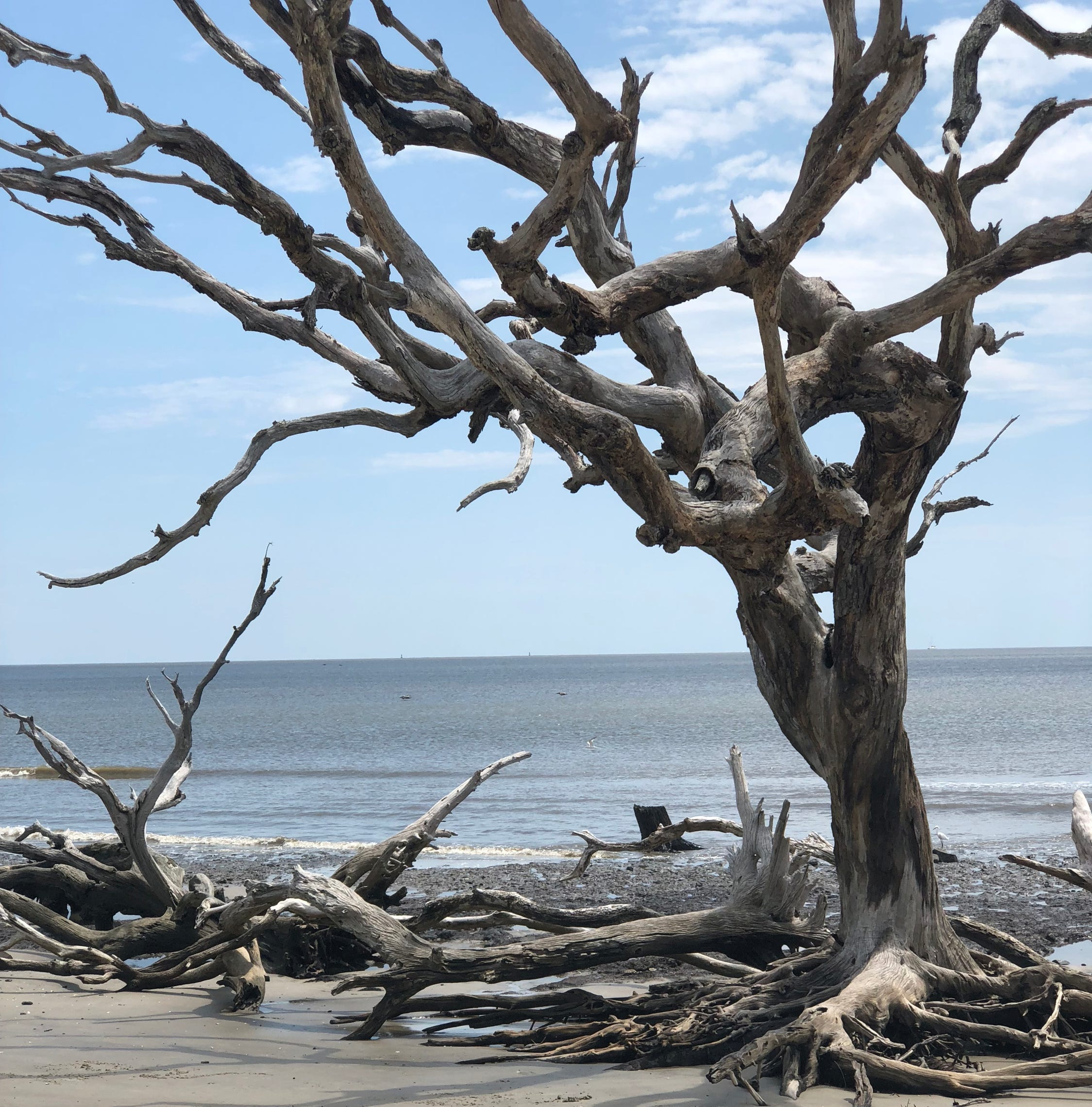Travel: Jekyll Island, Georgia, offers charming beach getaway for entire family