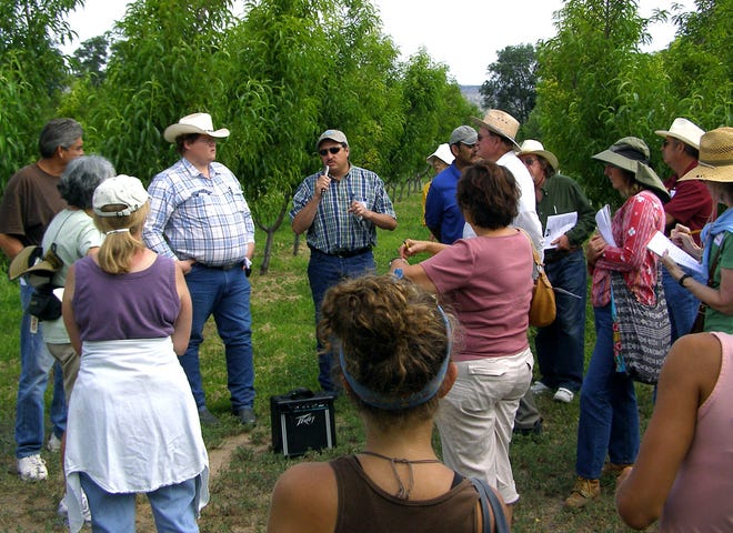 Rio Arriba County Extension agricultural agent Tony Valdez talks about the orchard at NMSU's Sustainable Agriculture Science Center at Alcalde during a field day tour.