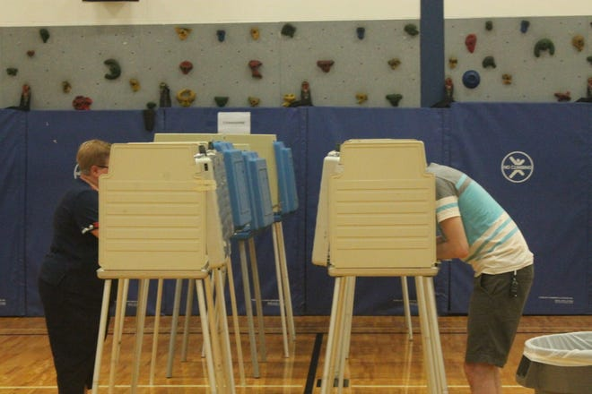 Voters head to the polls in the general election Nov. 6.