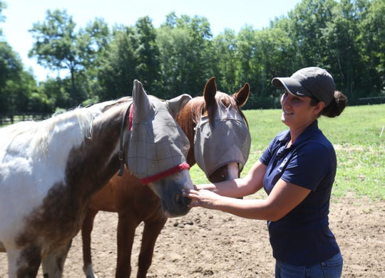 Executive director of Lucky Orphans Horse Rescue, Deanna Mancuso, pays a visit to two of the horses on the farm in Millbrook on July 19, 2018. The horses wear screens over their eyes to protect from flies.