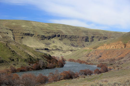 The lower Deschutes River Trail makes a beautiful bike ride over spring break on the east side of the Columbia River Gorge.