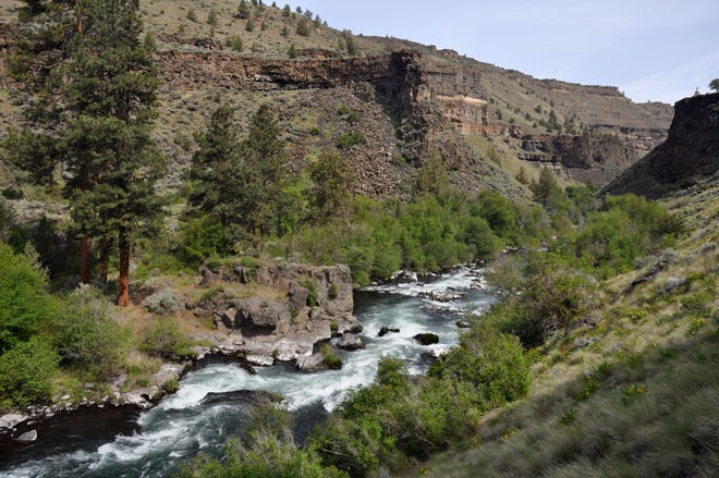 The Scout Camp Trail in Central Oregon follows the Deschutes River.