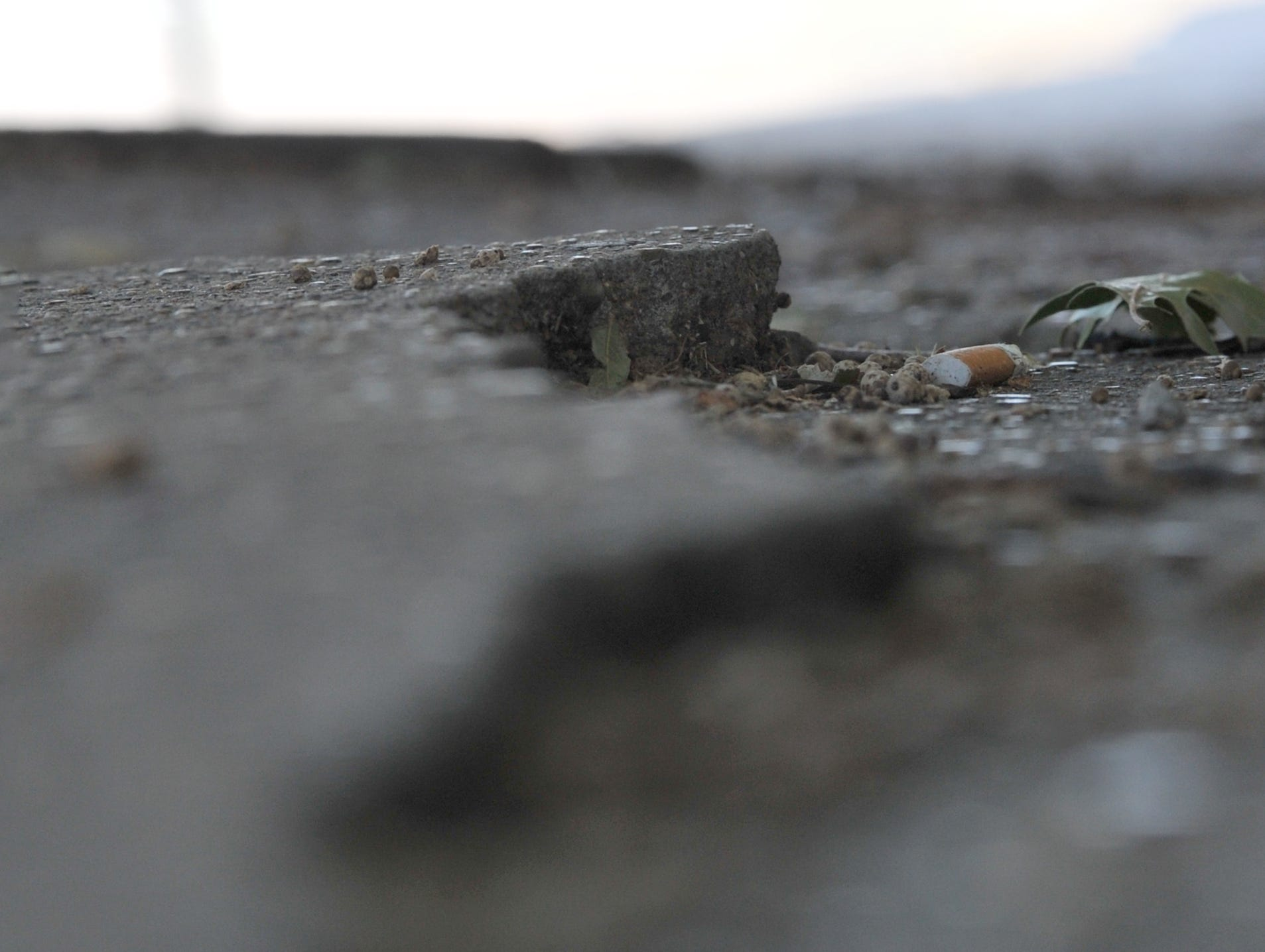 Wichita Falls downtown sidewalks near tree roots show signs of needing repairs as city council makes plans to place the repair cost on nearby business owners.