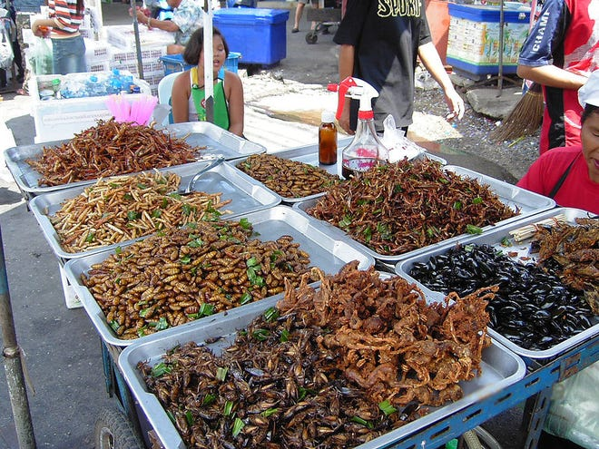 Deep-fried insects at a food stall in Bangkok, Thailand. More than 2 billion people around the world regularly consume insects.