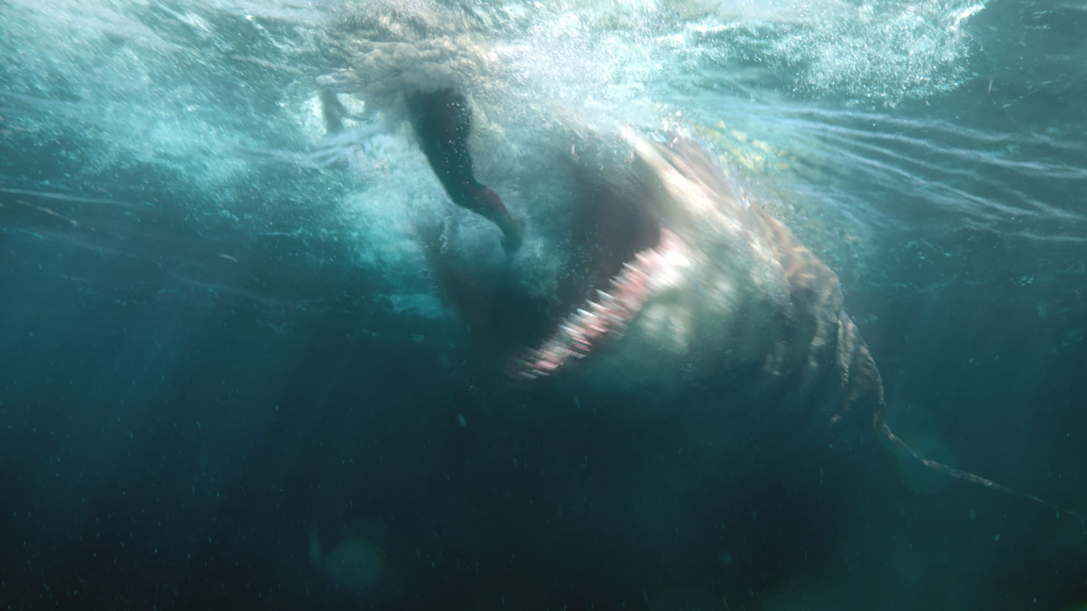 The Top 10 Killer Shark Movies Definitively Ranked From Jaws To The Meg