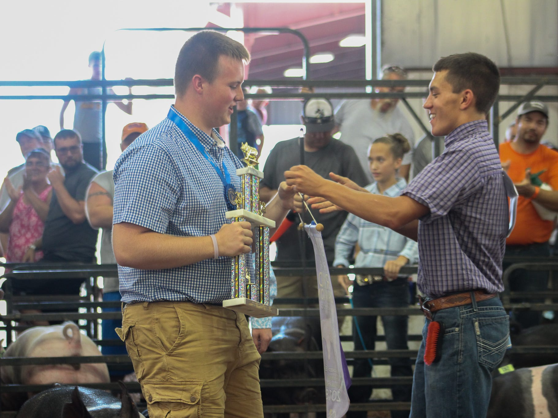 Highlights from the 2018 Jr. Fair Swine judging.