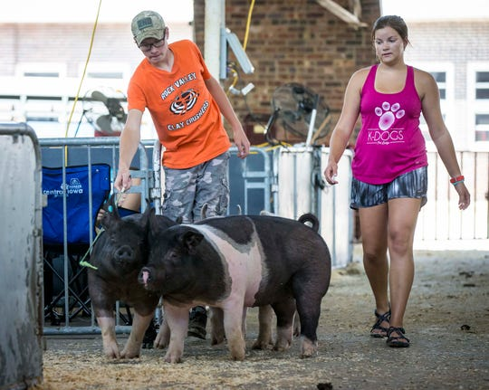 Dylan and Danica DeWit of Rock Valley, Iowa, lead their swine back to their pens at the Iowa State Fairgrounds Wednesday, Aug. 8, 2018, Des Moines, Iowa. The Iowa State Fair runs from Aug. 9 to 19.