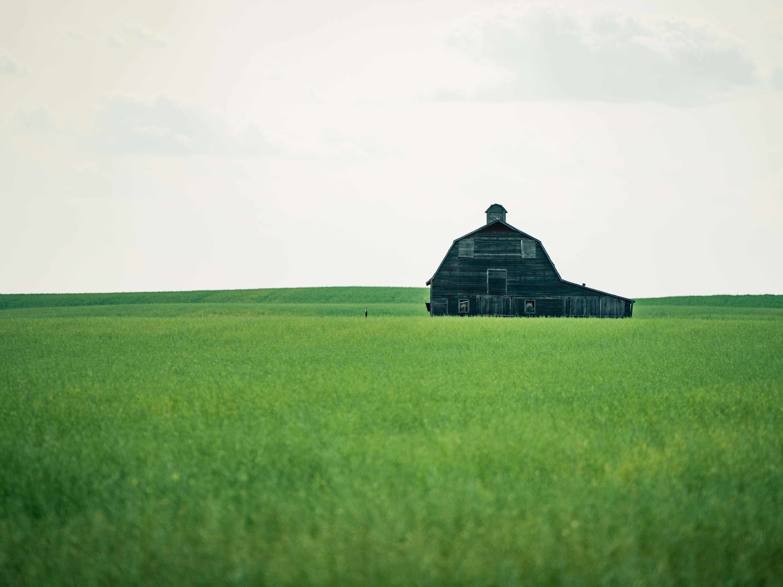 An old barn weathers away in a field near Larslan.