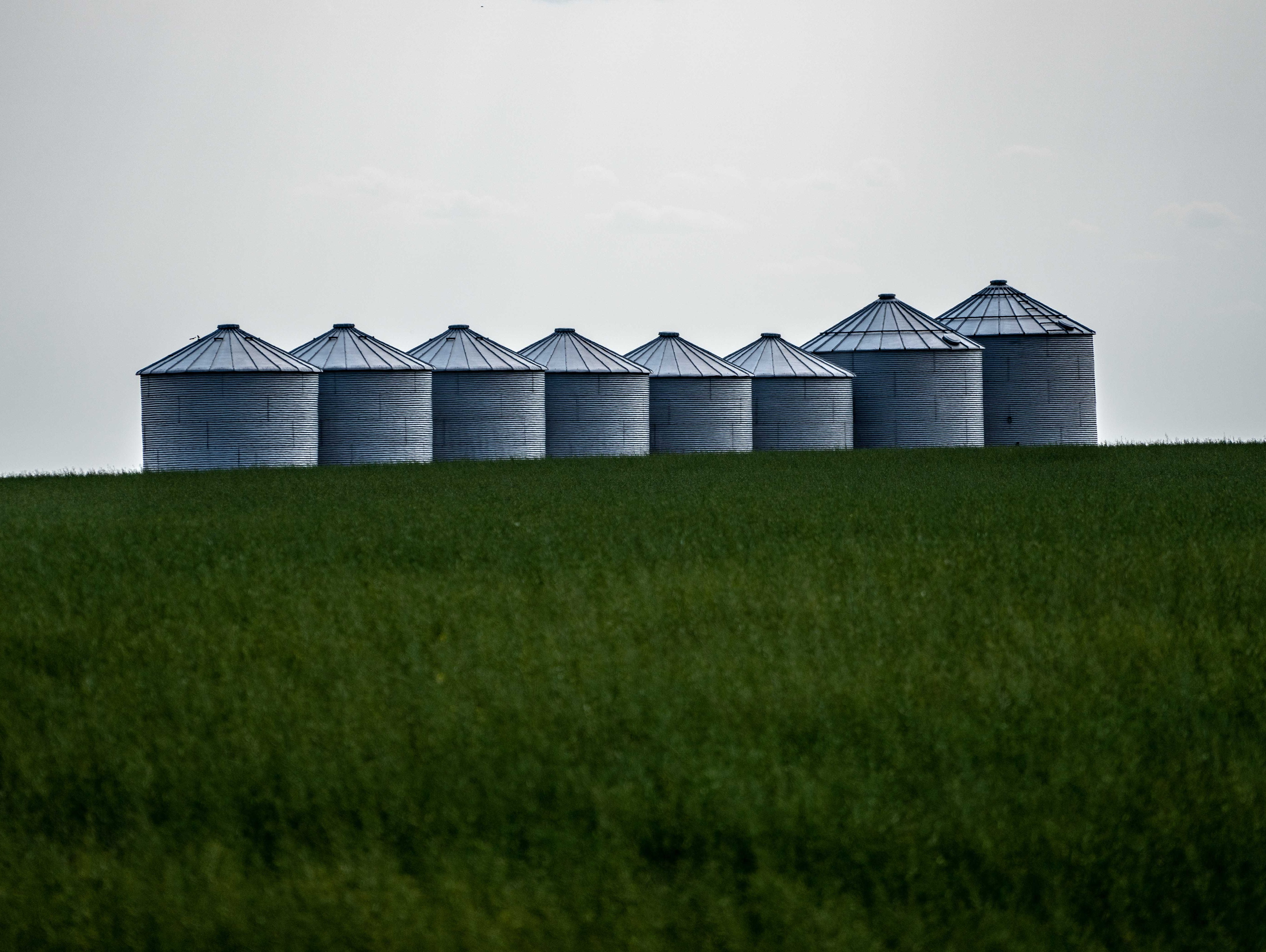Grain bins are one of the few signs of human habitation in this area of greater Lustre.