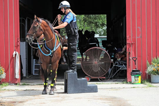Sgt. Deb Caravello  finishes saddling up her horse Saul to ride in the parade and on patrol.