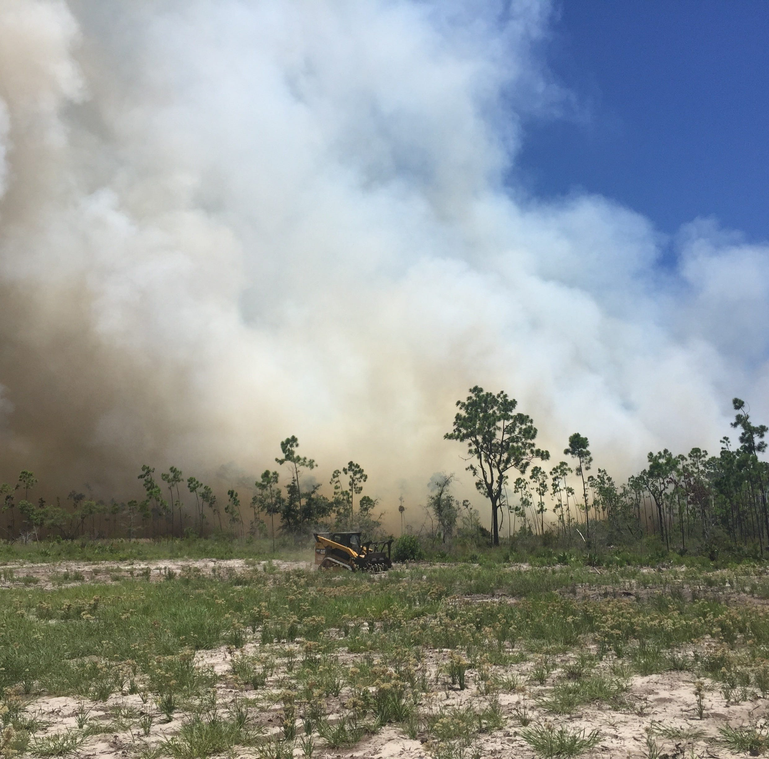Bergren Road fire 95 percent contained, estimated at 44 acres