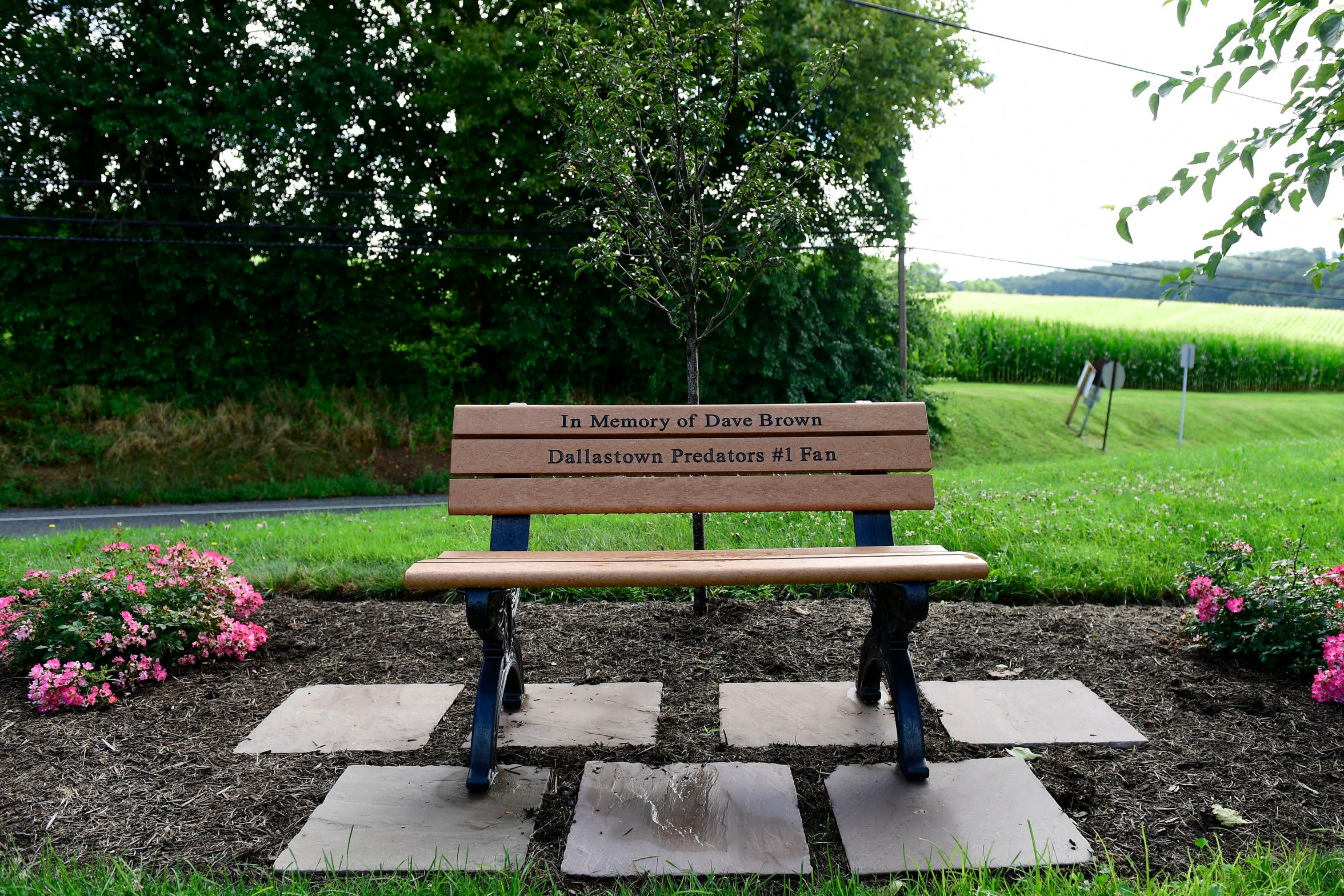 A bench, donated by Sean Brown's soccer team, the Dallastown Predators, sits in front of Brown's Orchards in memory of Dave Brown, the team's '#1 fan,' Wednesday, August 1, 2018.