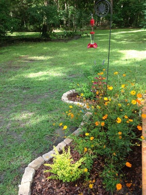 Gardens can be planned to attract butterflies and bees. Photo by Kathryn Voigt.
