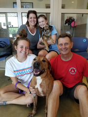 As soon the Humane Society of St. Lucie staff brought him out for a meet-and-greet, you could tell Cage was already part of the family.