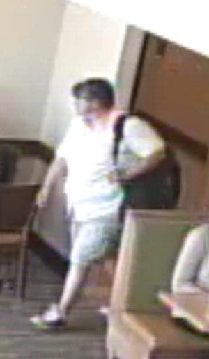 Des Moines Police are looking to identify the suspect who they believe stole several hand dryers out of public restrooms.