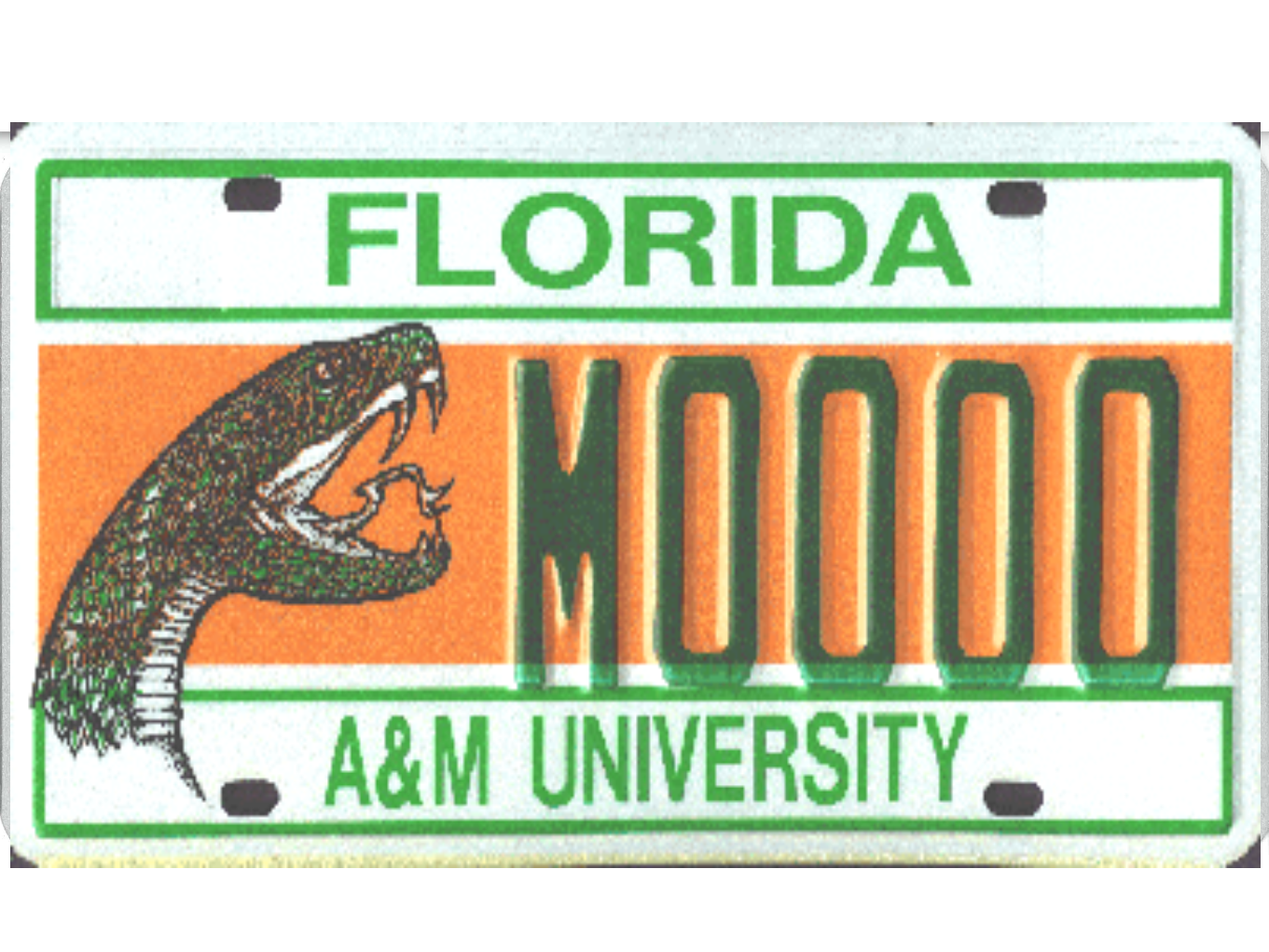 The Florida A&M University license plate.
