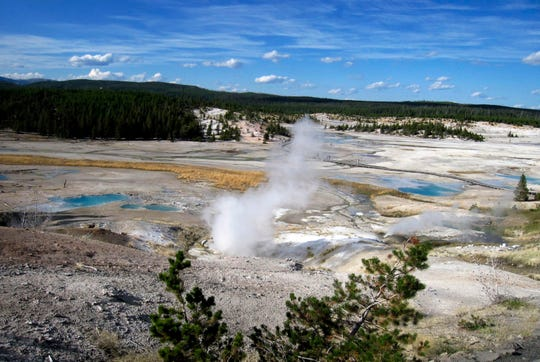 Norris Geyser Basin in Yellowstone National Park. President Trump named Southeast region director David Vela as the new head of the National Park Service, pending Senate approval.